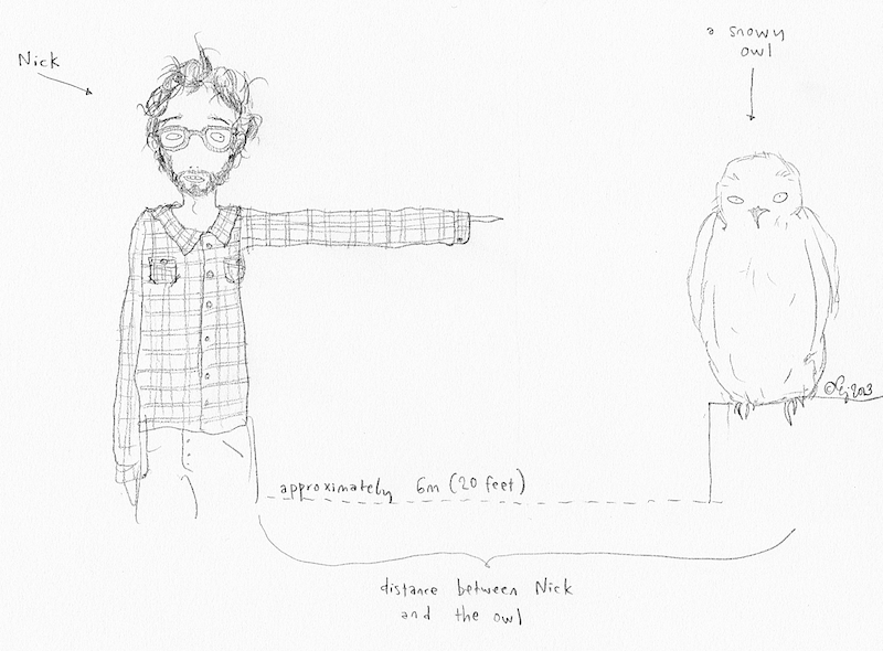 Empirical evidence of the New Year's Eve | Simple drawings ...